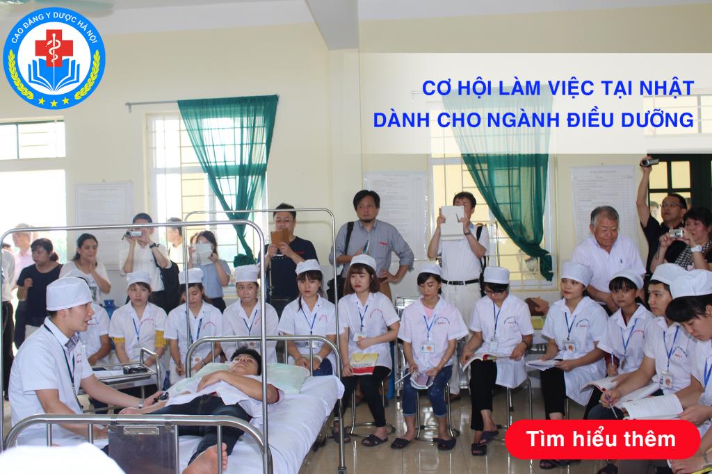 Buổi làm việc của các giám đốc bệnh viện Nhật bản tại Trường Cao đẳng Y Dược Hà Nội